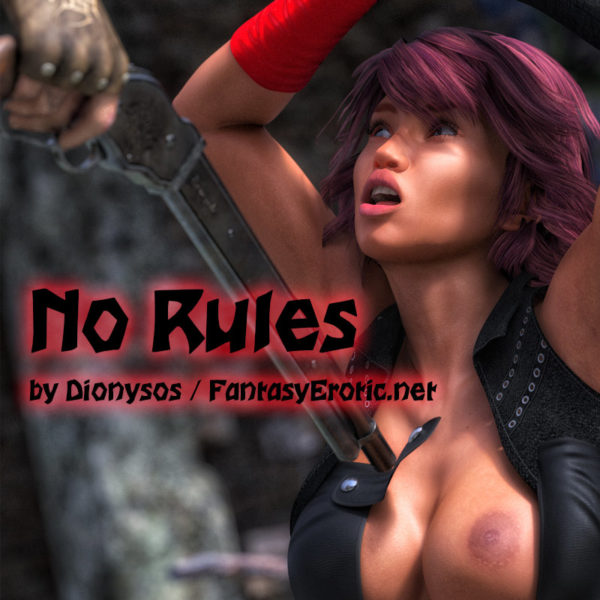 No Rules Cover